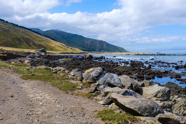 The beautiful Wairarapa coastline