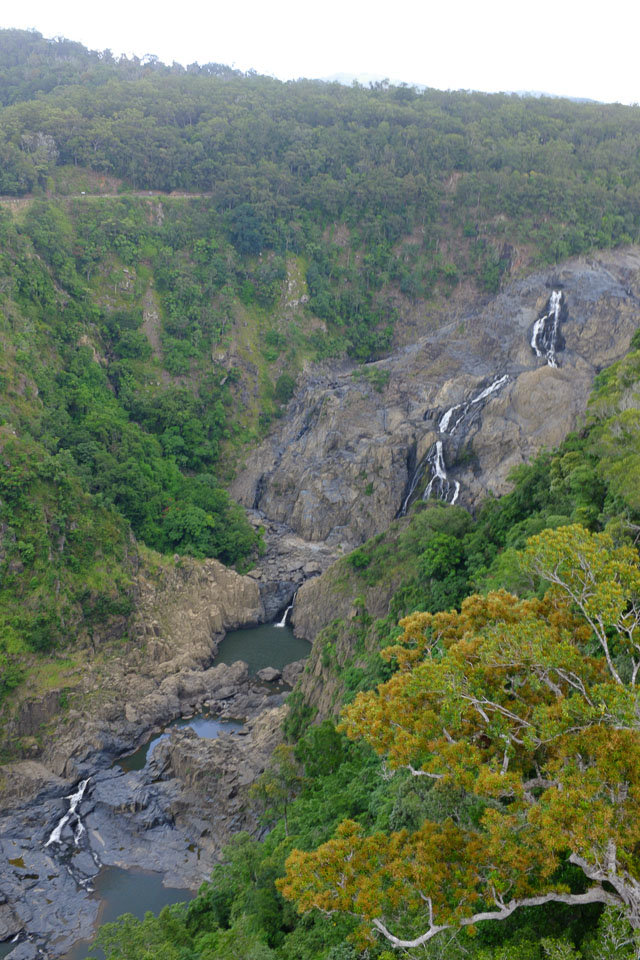 Baron falls are the major landmark in Kuranda rainforest
