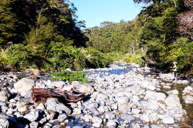 The Atiwhakatu Stream near the hut