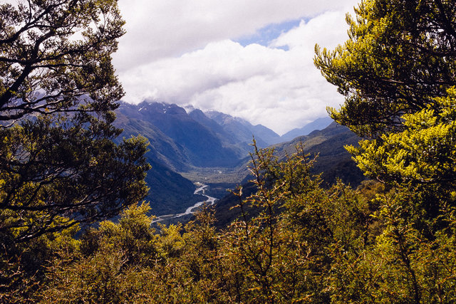 One of rare clear views on the track -- Hollyford Valley