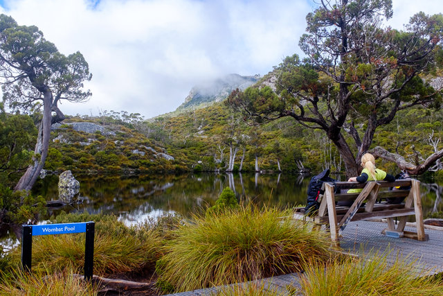 Chilling on a bench at Wombat Pool