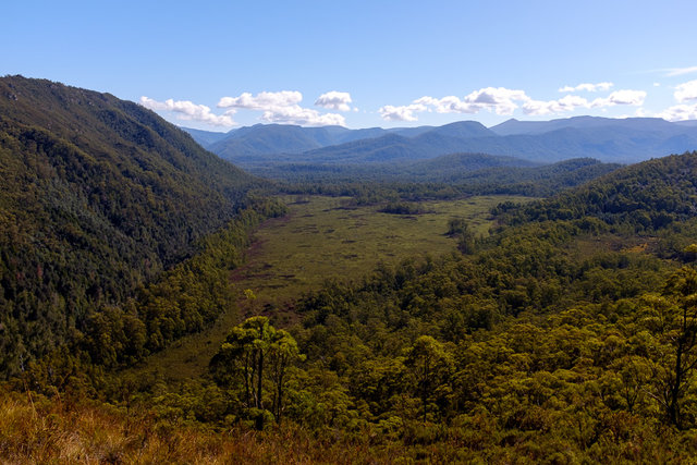 An emerald valley from Donaghys Lookout