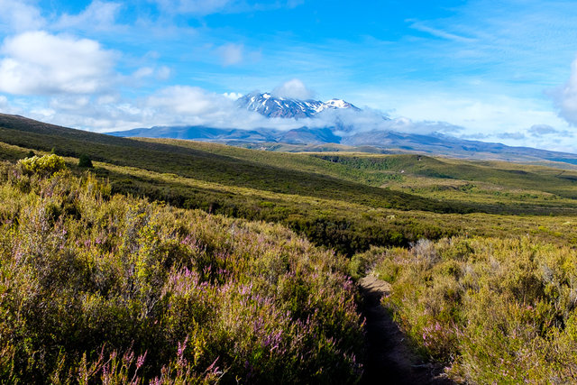 For the last time -- Mt Ruapehu
