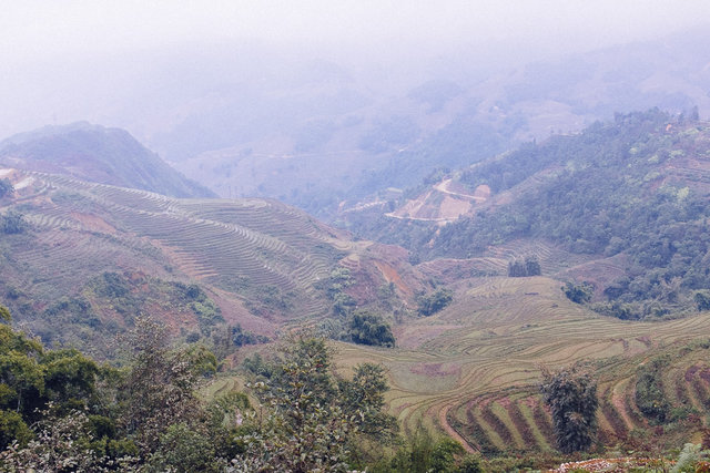 Another misty view of Muong Hoa Valley